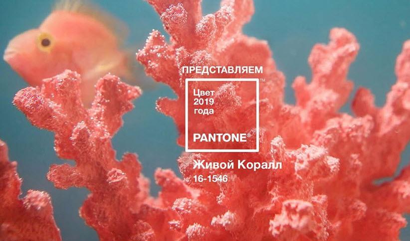 Цвет 2019 года живой коралл и менструальные капы